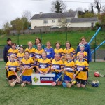School camogie Team 2014