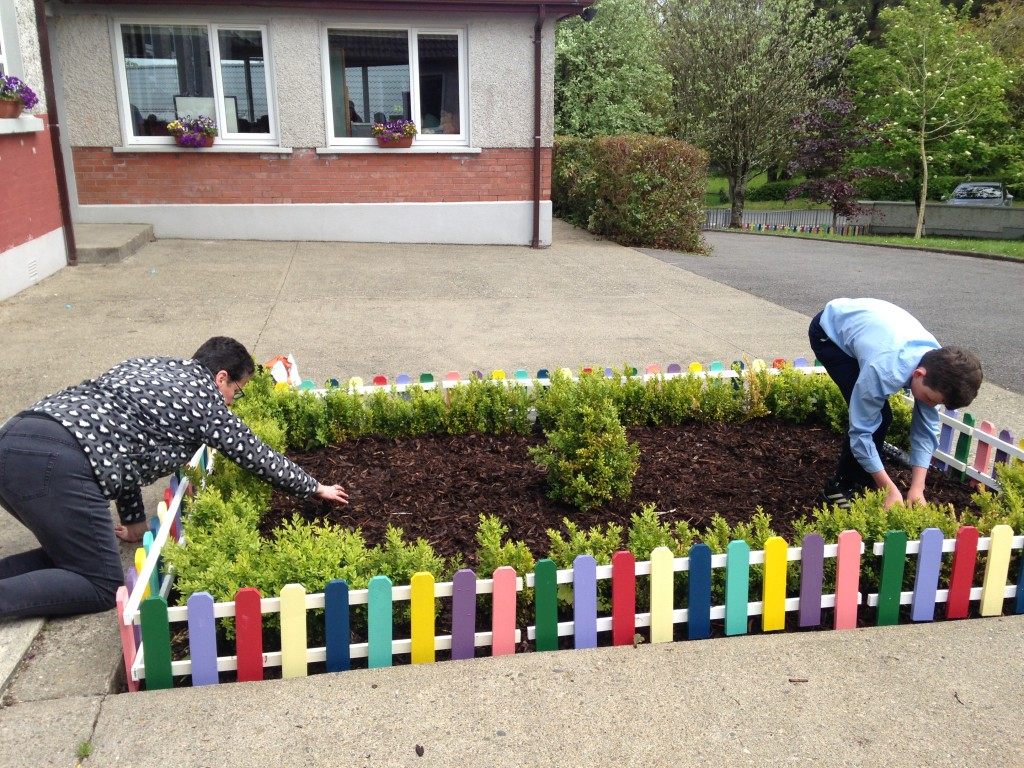 Tidy Towns 004