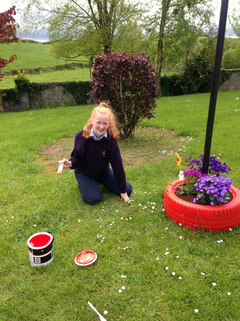 Tidy Towns 007