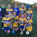 Camogie Final