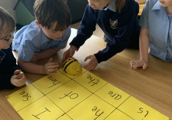 Problem Solving With BeeBots